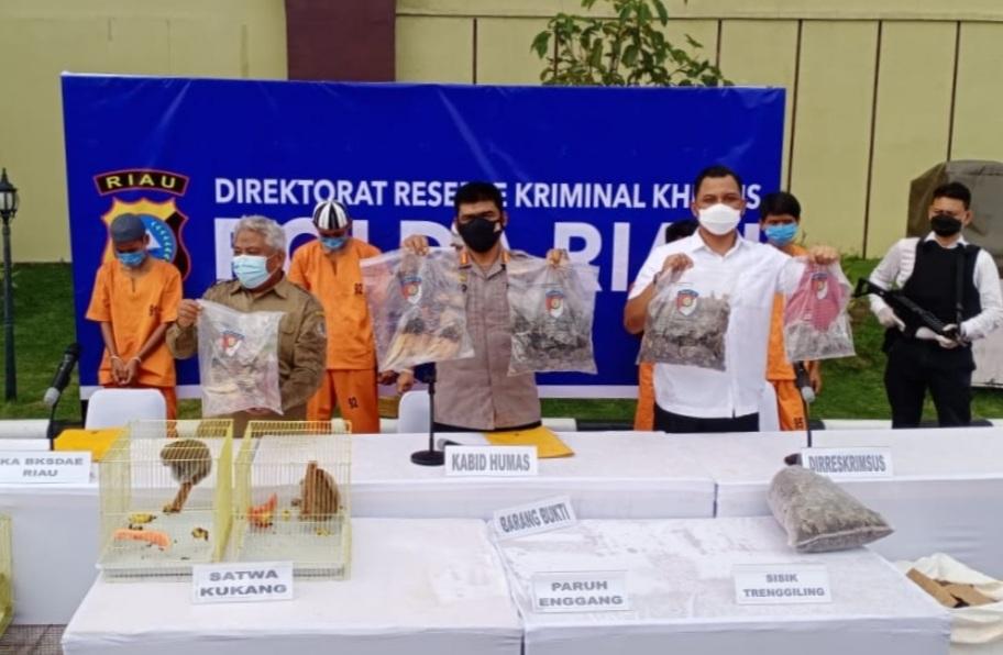 Ditreskrimsus Polda Riau Gagalkan Peredaran Kulit Trenggiling